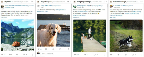Screenshot of Instagram Feeds in Hootsuite